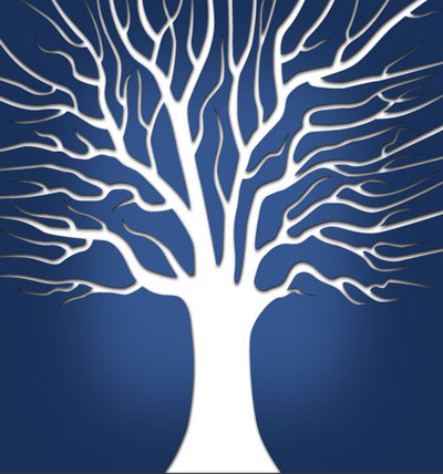 Wisdom principles illustrated by a branching tree.